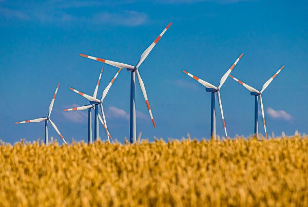 Wind mills in a field