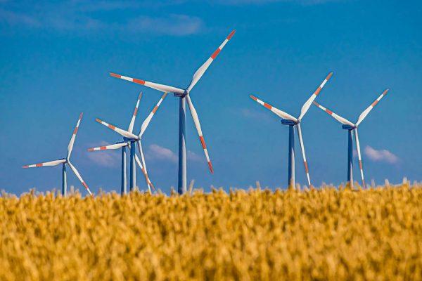 Wind mills in a field